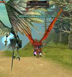 SRO[2011-01-02 18-36-59]_83.jpg
