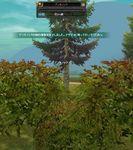 SRO[2011-01-15 22-29-17]_22.jpg